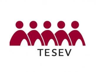 TESEV (2)